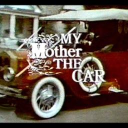 mothercar2